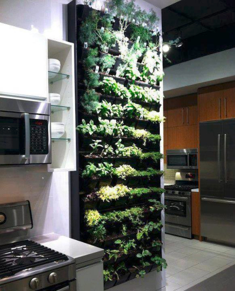 herb-wall-concept