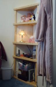 Missy shelves daylight