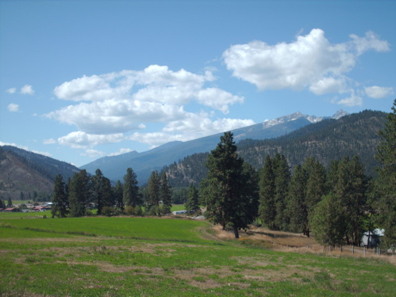 view up the west fork from repeater